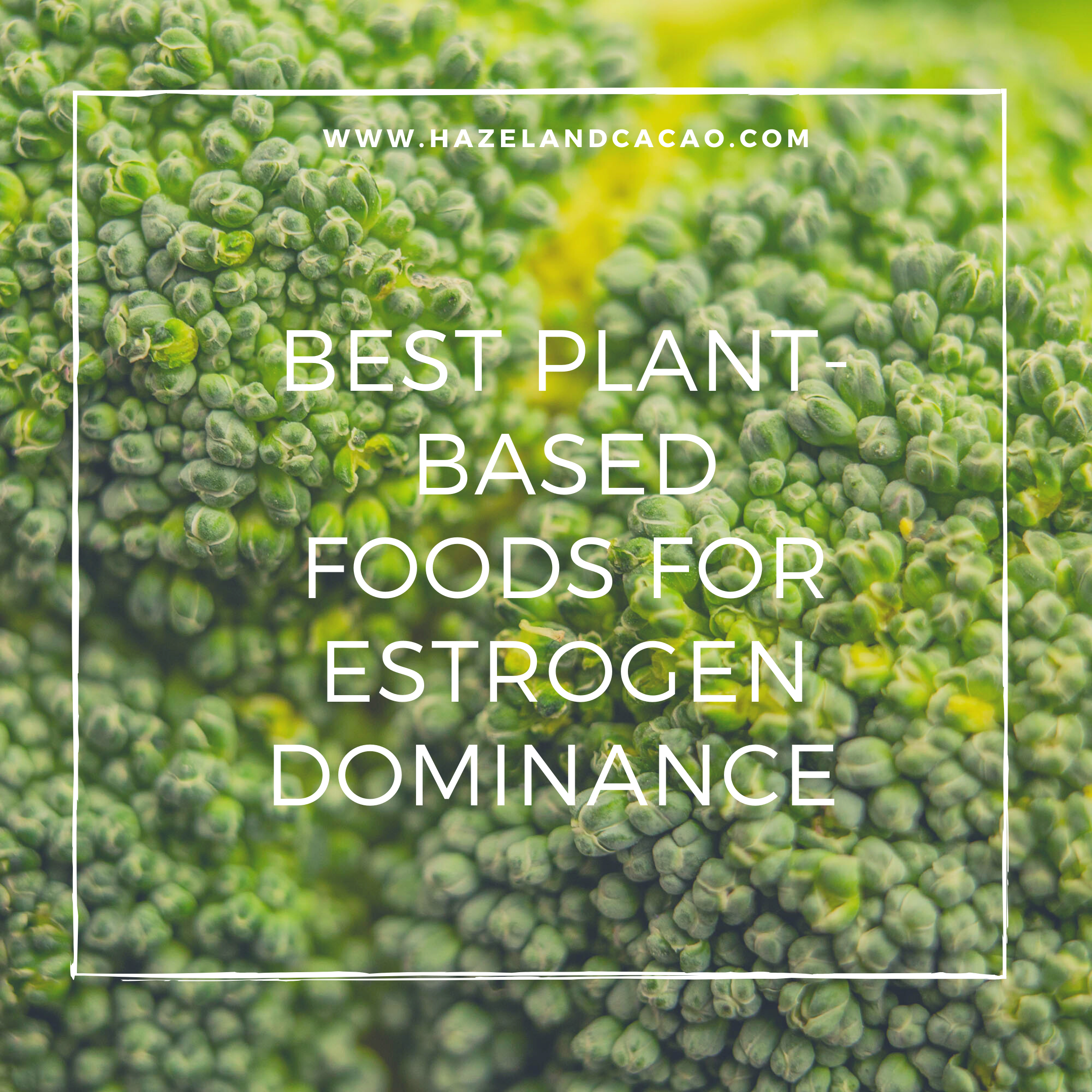 The Best Plant-Based Foods for Estrogen Dominance and Estrogen Clearance